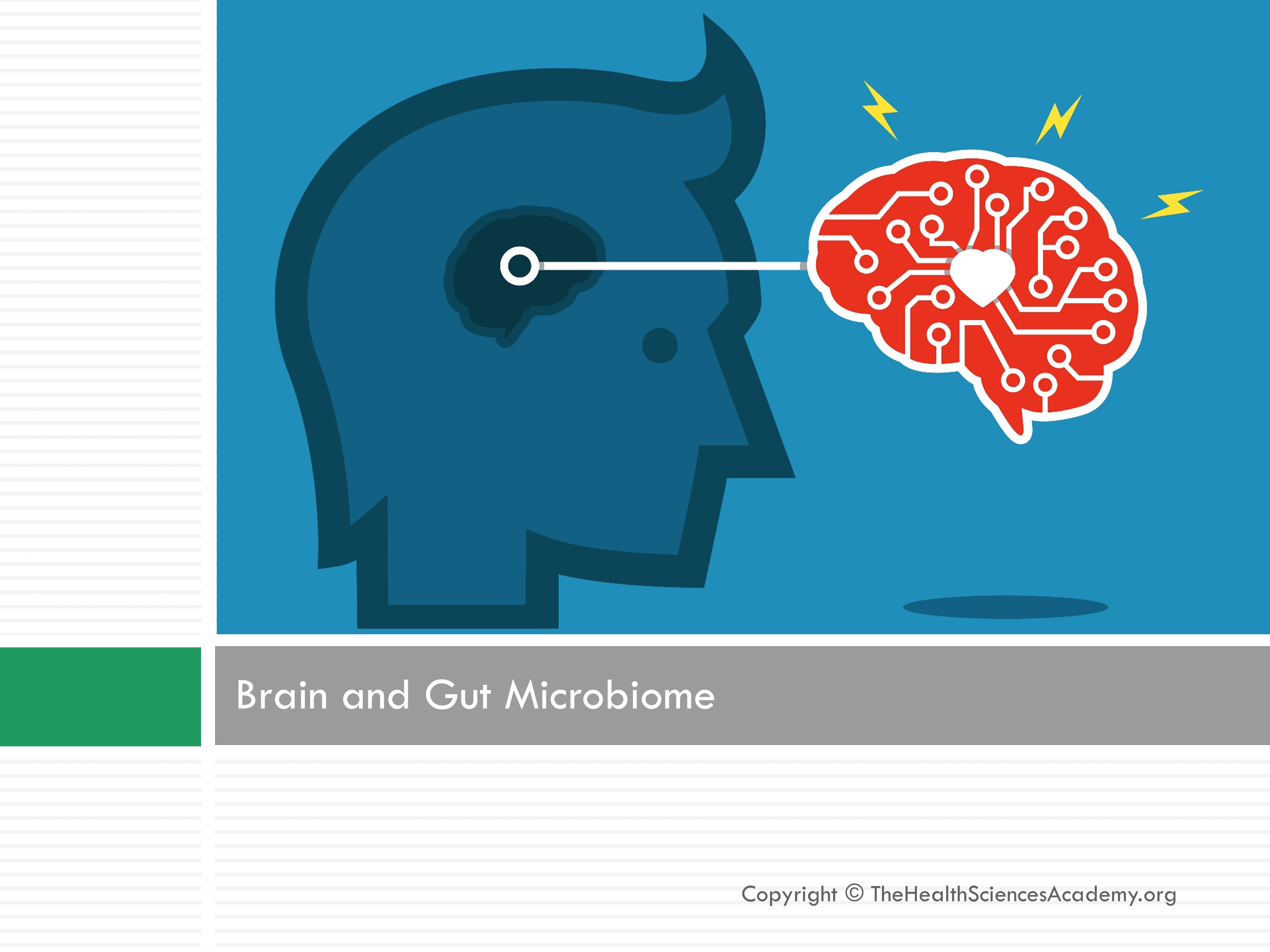 How Gut Microbes Can Change the Brain