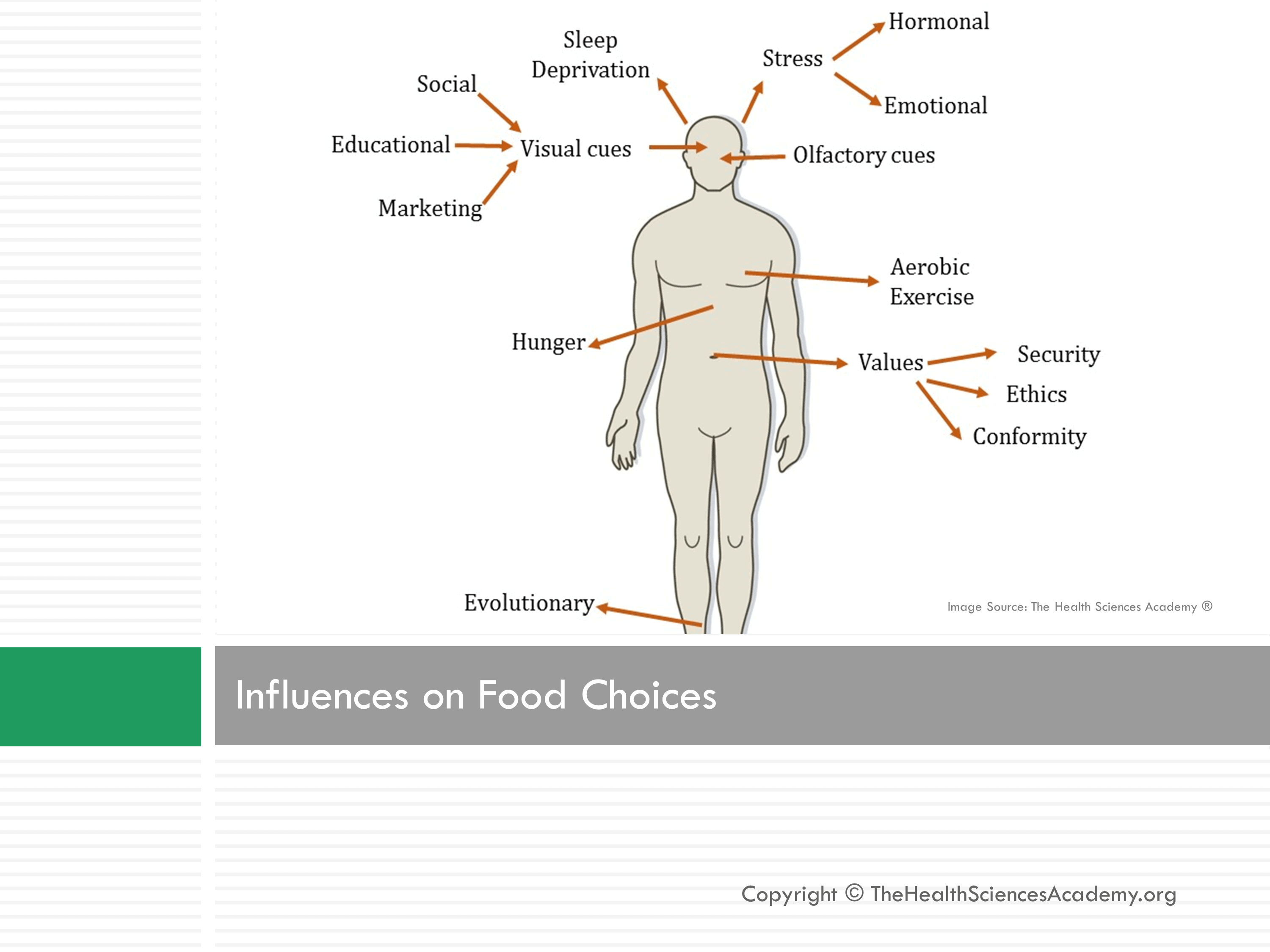 learning influences our food choices Learn how to make healthier food choices when you're selecting and preparing a balanced diet of fruits, vegetables, grains, protein, and dairy.